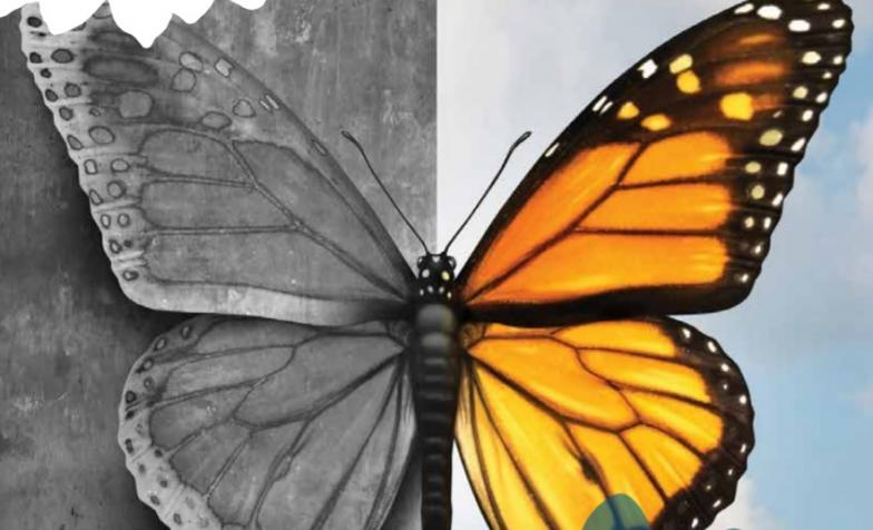 Butterfly inequalities